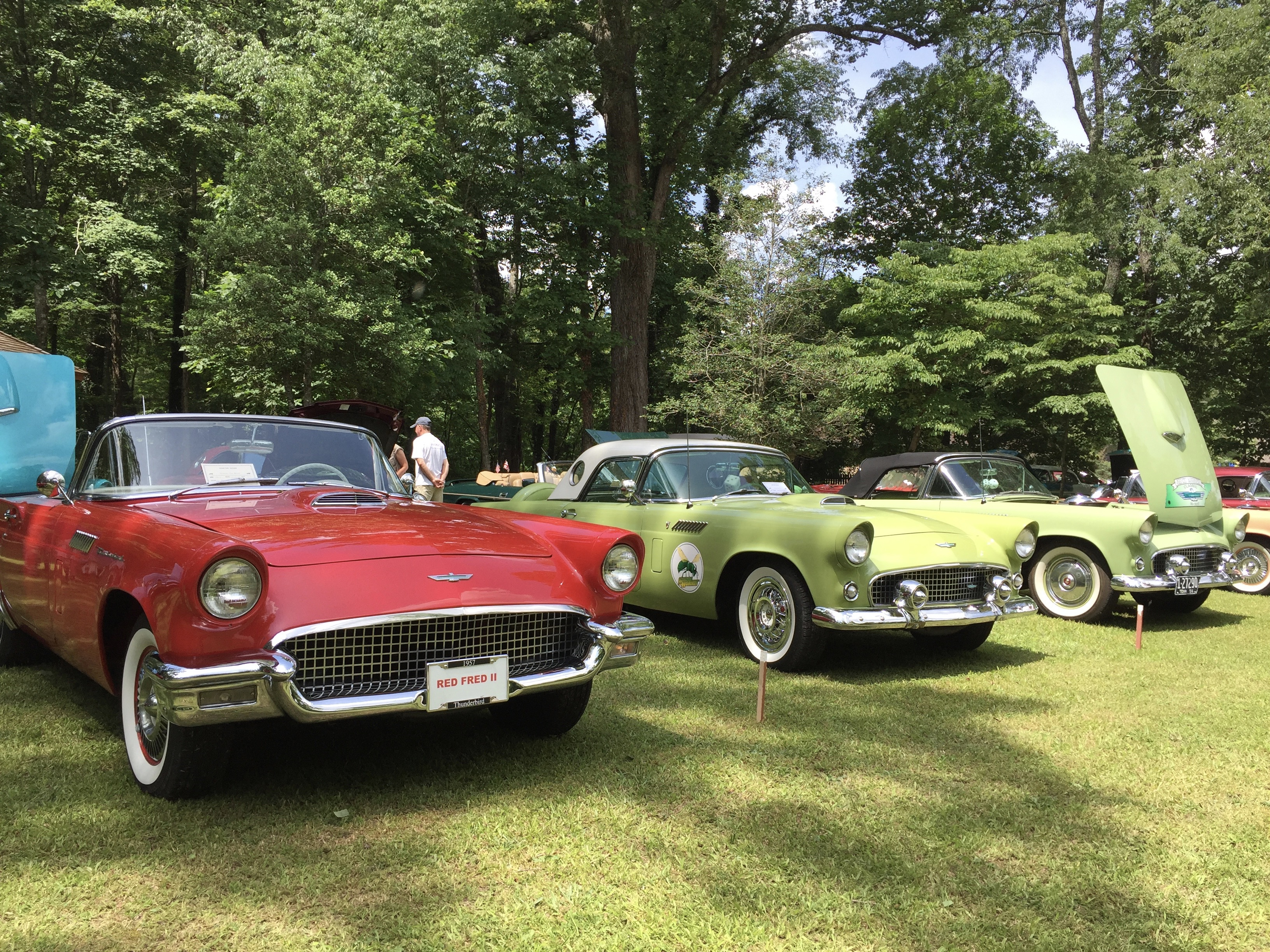 Classic Car Show | Historic Rugby