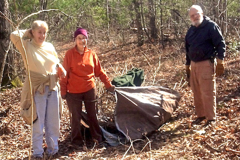Volunteers needed to remove invasive plants on Nov. 2nd